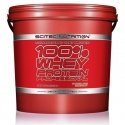 100% Whey Protein Professional 5 Kg
