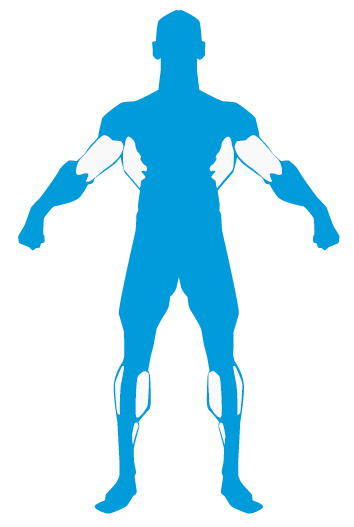 Entrenamiento espalda biceps gemelos MundoNutrición.es