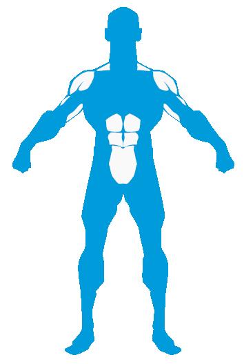 Entrenamiento hombros trapecios triceps abdomen MundoNutrición.es